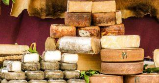 クアトロフォルマッジ好きも夢中、主婦に人気のチーズ検定とは? 9
